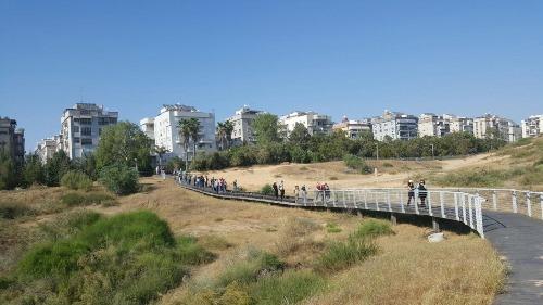 הליכות גיין-סיורים ברחבי חולון. צילום-עיריית חולון (1)