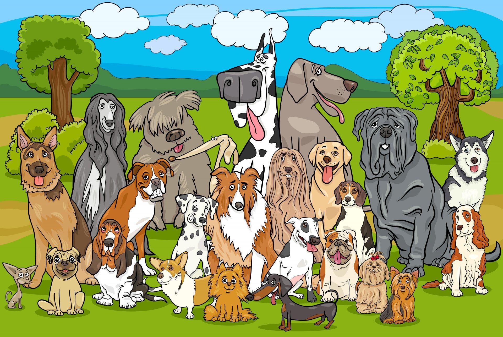 גינת כלבים