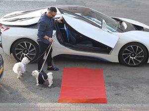 החתן, הכלה, הנהג והשטיח האדום