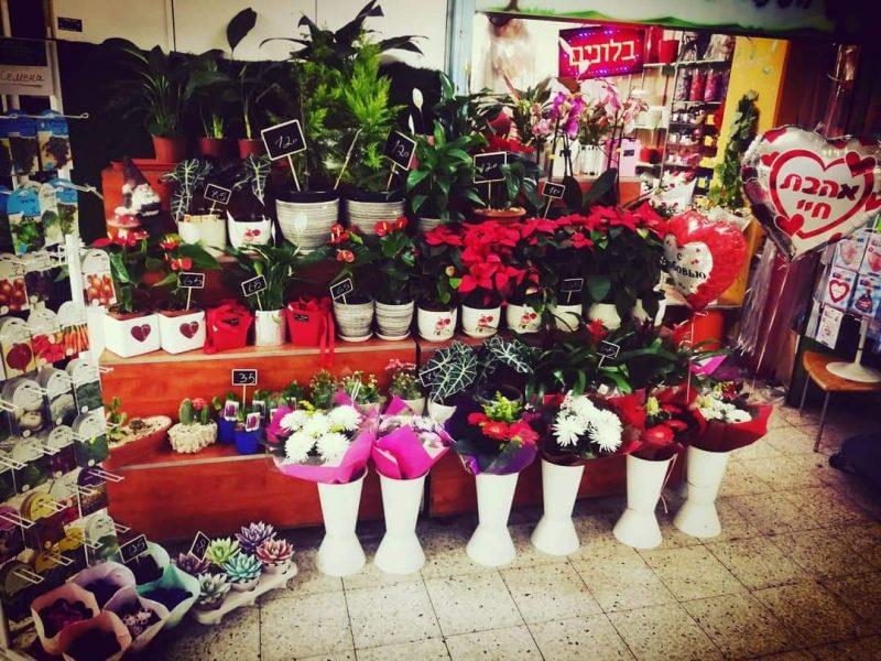 """חנות הפרחים """"הגינה של סבתא חנה"""" במרכז נאות רחל (צילום: שי לב רן)"""